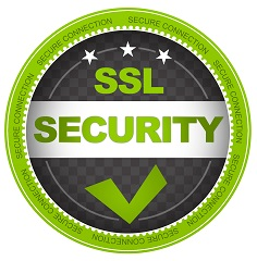 Green SSL Security Button on white background.
